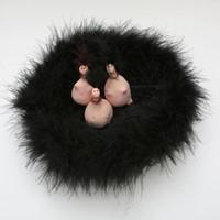 3 petites créatures dans nid de fourrure, 2, 2012