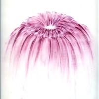 pastel rose sur calque 2007