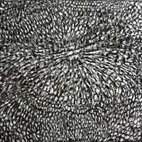 Pastel noir sur papier canson , 145 cm x 153cm, 2009