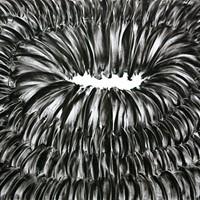 Pastel noir sur papier canson, 50cm x 60cm 2009