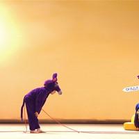 L'ombre de l'âne