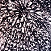 Pastel noir n° 7 70cm x 40cm 2007