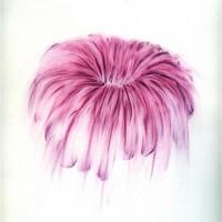 Pastel rose sur calque 40 x 60cm 2007