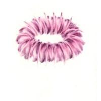 Pastel rose sur calque 15cm x 10cm 2009