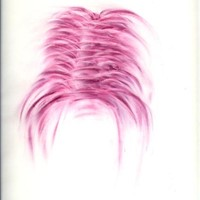 Pastel rose sur calque 40cm x 60cm 2007
