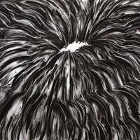 pastel noir n°1', 50 cmx 60 cm, 2010