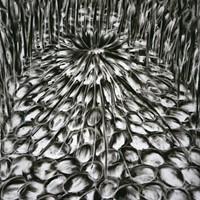 Pastel noir sur papier 51cm x 68cm 2008