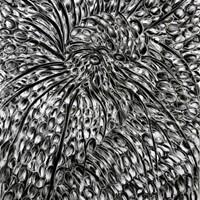 Pastel noir sur papier canson 75cm x 115cm
